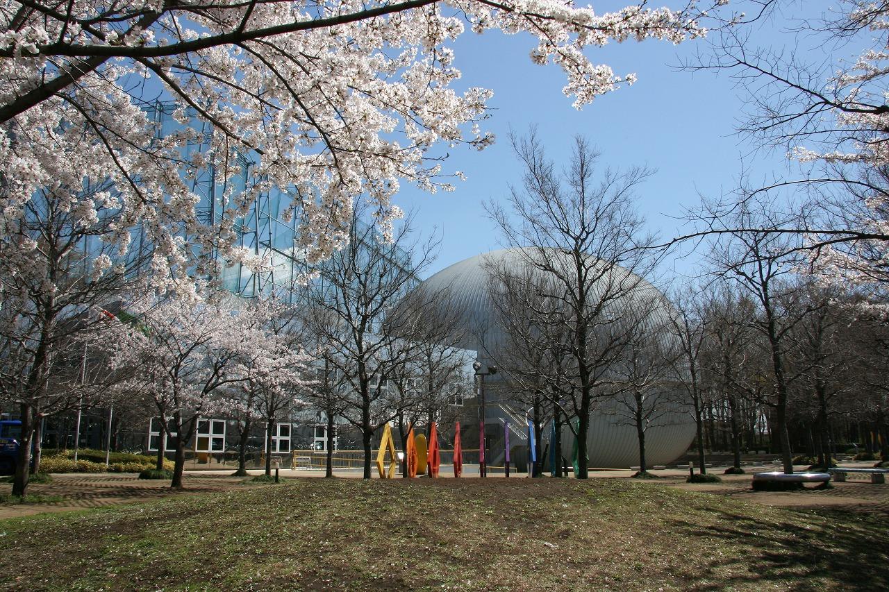桜とサイエンスエッグ